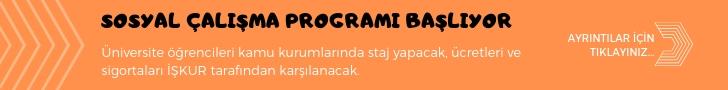 sosyal çalışma programı