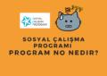 sosyal çalışma başvuru program no nedir